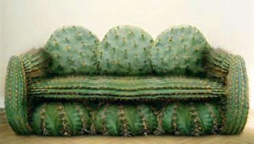 Canapeaua-cactus
