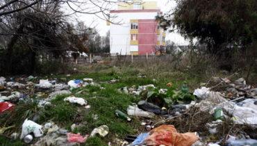 Aruncatul gunoiului pe stradă